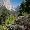 El Capitan, Tunnel View, Yosemite National Park, California