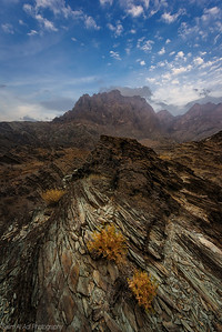Wadi Bani Auf