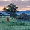 Masai Hut near Tarangire, Tanzania