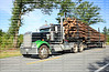 LYONS, GEORGIA, USA - JUNE:  Kenworth semi truck in rural Georgia, carrying a full load of pine tree logs, on it's way to the paper mill as seen on June 5, 2018.