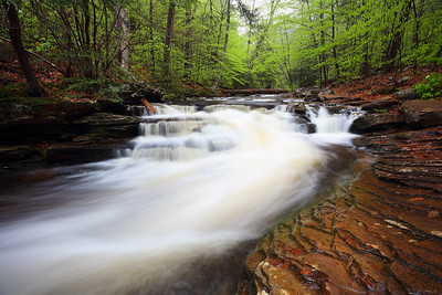 Cascade in Ricketts Glen State Park