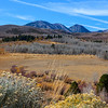 Fall in Mono County