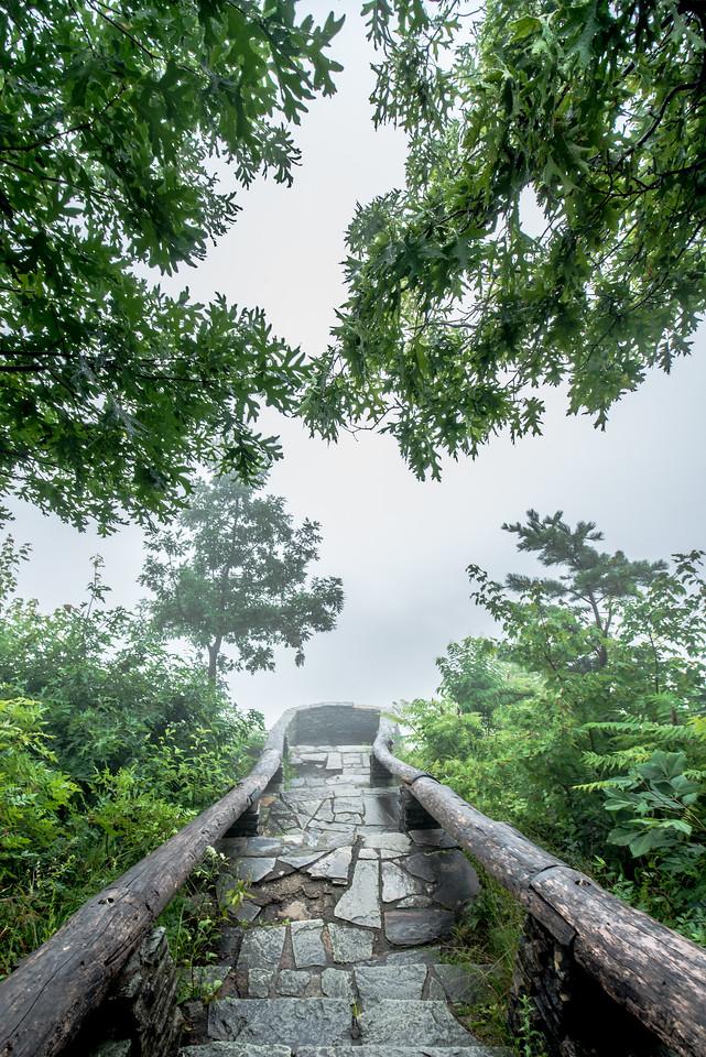 Fog on Wiseman's View