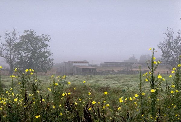 Barn, Twin Oaks Valley, San Marcos, Ca