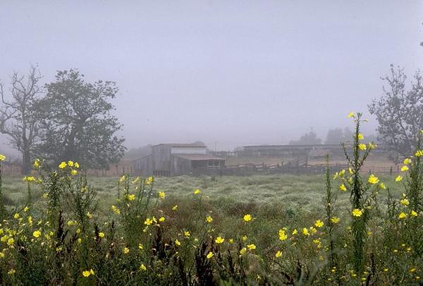 Barn, Twin Oaks Valley, San Marcos, Ca