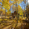 Cabin in Aspens 6340