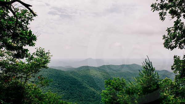 Unicoi Gap-