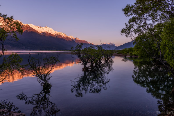 The Trees of Glenorchy