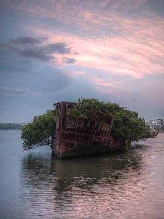 The Wreck at Homebush Bay