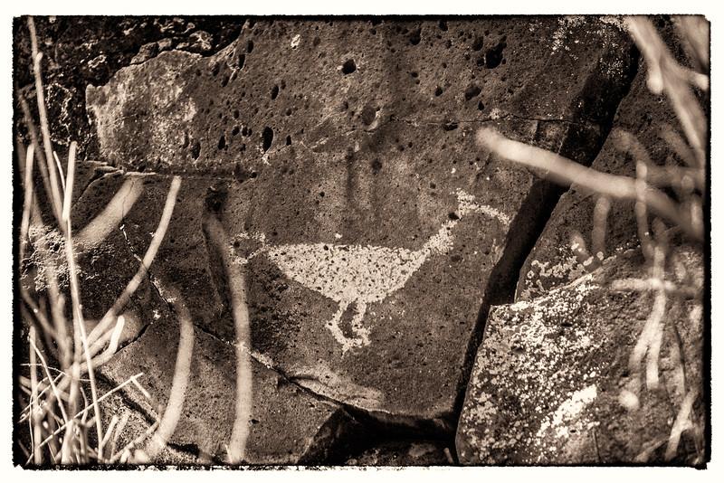 Bird Petroglyph 1