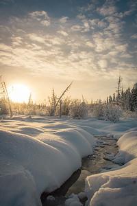 Taken in Whitehorse, Yukon