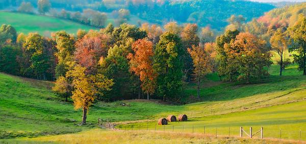 Oct 17 - Fall Fields