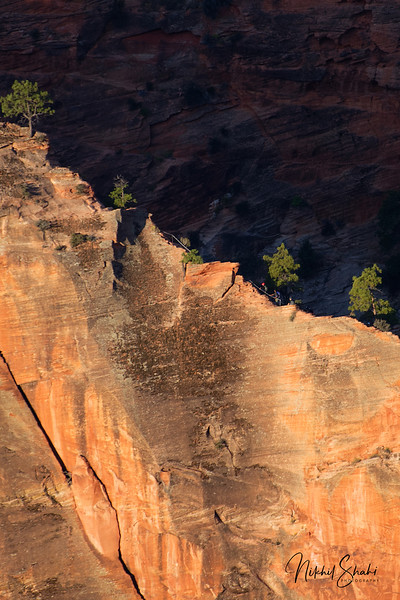 Hikers en route to Angels Landing, Zion National Park, Utah