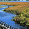 Point Pelee National Park - Marsh Boardwalk