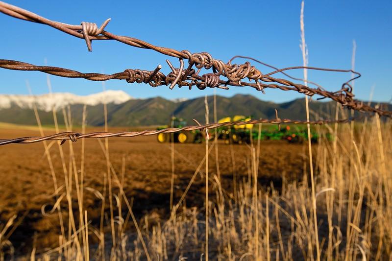 Wire #3 Near Bozeman, Montana