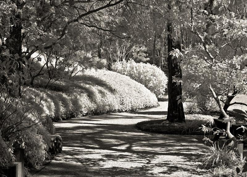Morikami Path