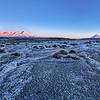 Desert Frost