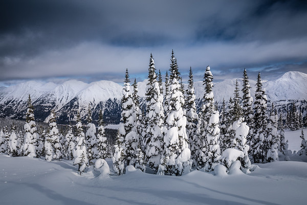 Pine Pass