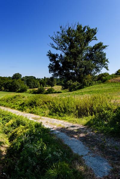 Chemin Girondin
