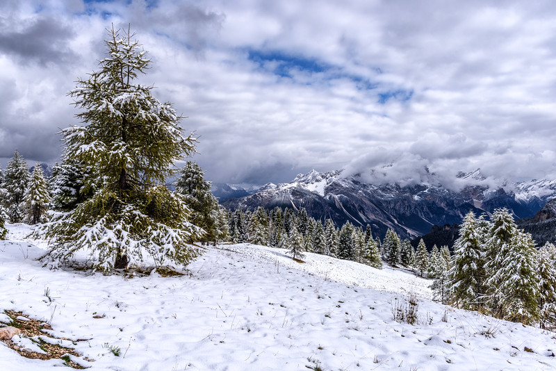 Snow in the Dolomites near Cinque Torri (Cortina d'Ampezzo), Italy