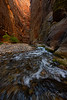 Wall Street | The Narrows | Zion National Park | Utah
