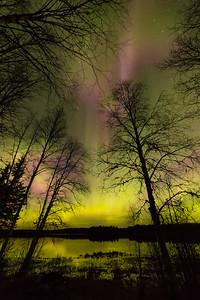 Vivian Lake G3 Aurora