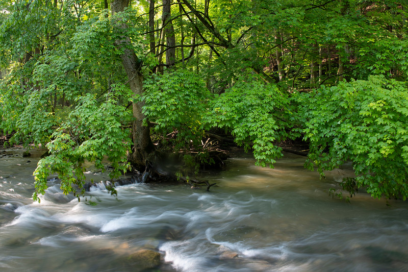 Raccoon Creek, IN