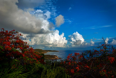 Bolongo Bay from Webber/Balash Estate, St Thomas USVI