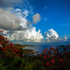 Bolongo Bay from Webber/Balash Estate, St Thomas USVI