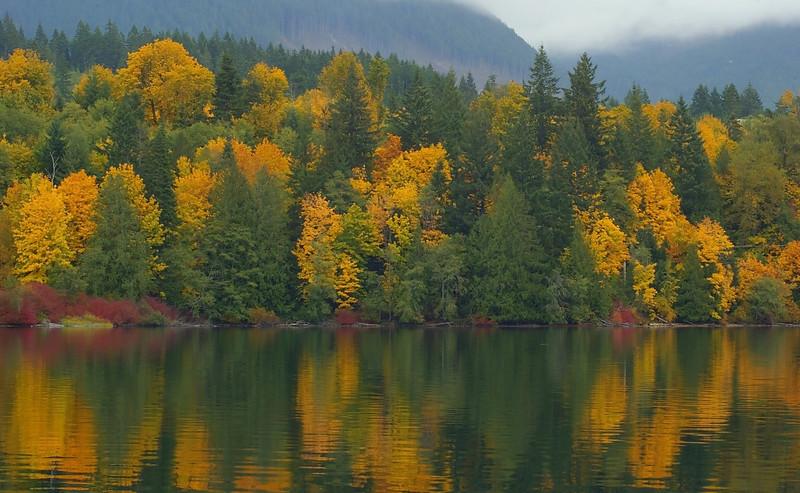 Vancouver Island, Vancouver, British Columbia