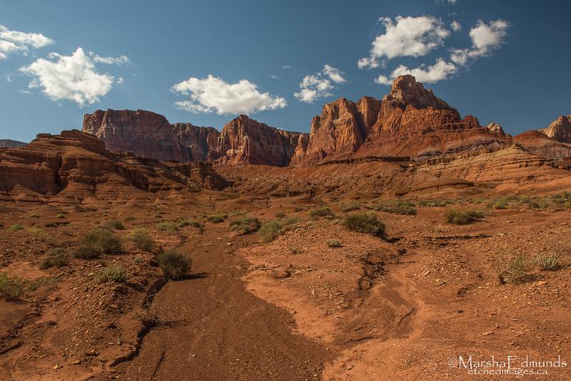 Vibrant Colors of Arizona