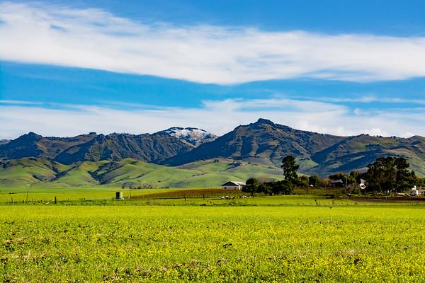 East Foothills  & Snow Capped Peak