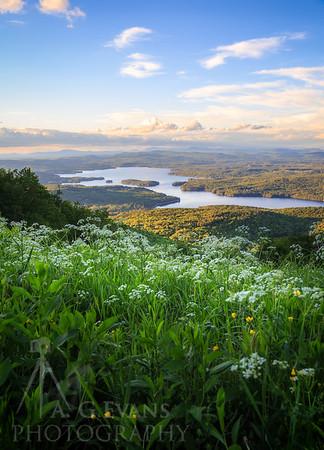Lake Sunapee View
