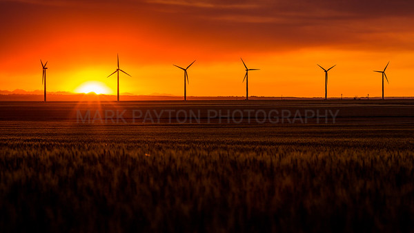 Windmills and Setting Sun
