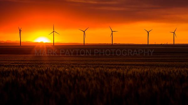 Windmills and Setting Sun