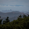 Day #162 - Mt. Tamalpais State Park