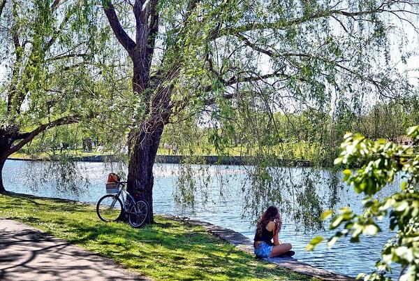 Spring at Lake Watauga