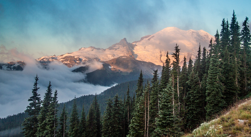 Mt. Rainier National Park at Sunrise