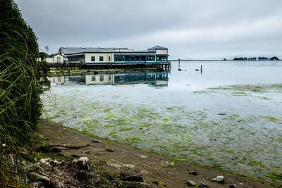 Bodega Bay, California I