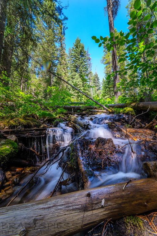 Little Mountain Stream