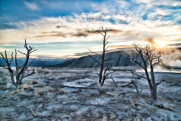 May 16 - Morning Sun at Mammoth Hot Springs, Yellowstone National Park<br /> <br /> Thanks so much for all your nice comments on my Blue Heron image I posted yesterday - they are all appreciated!