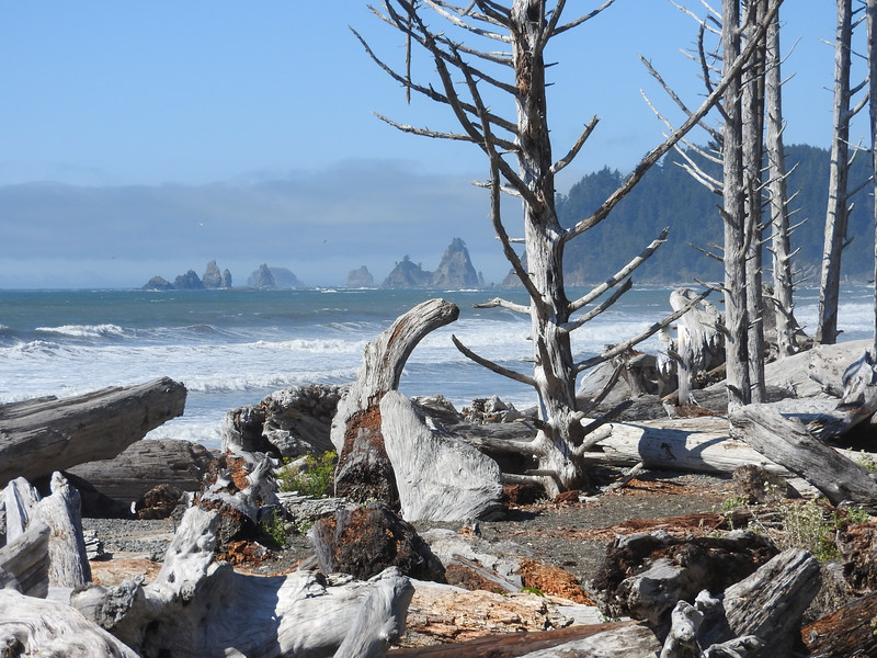 Rialto Beach, near Forks, WA in September