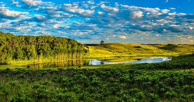 Field & Prairie