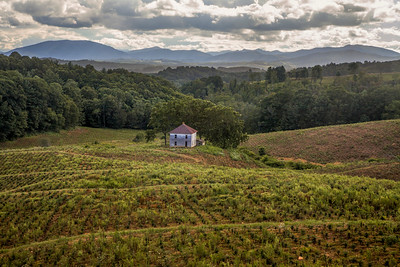 Blue Ridge Farm