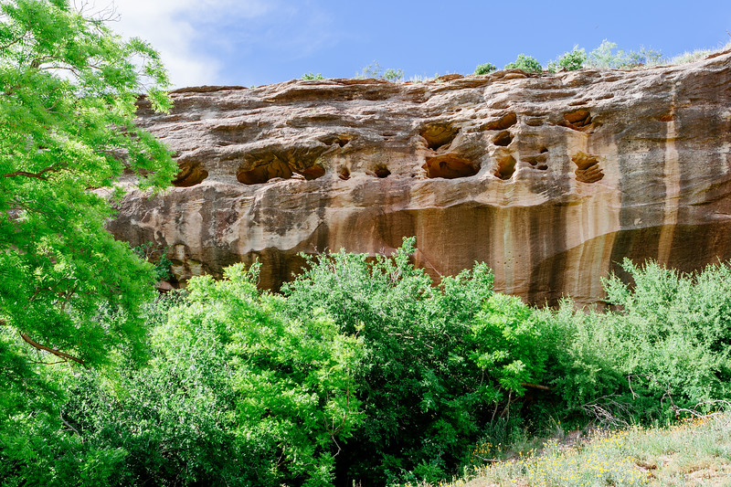 Nature's art.  Canyon wall in the Palo Duro Canyon located in the Texas Panhandle.