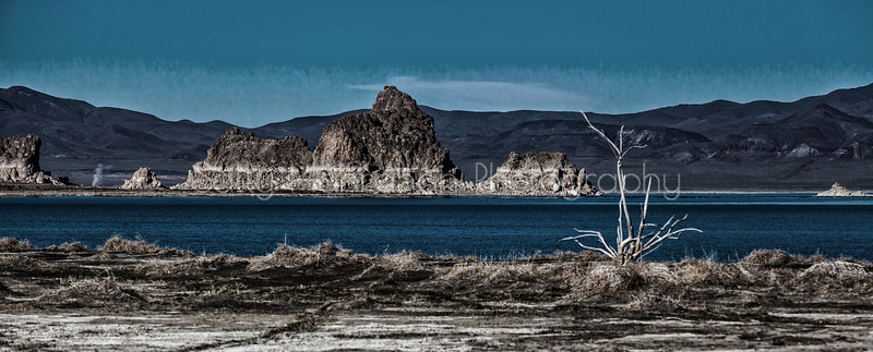 Pyramid Lake - the Needles