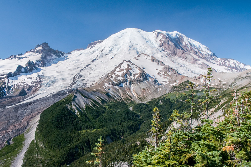 Mt Rainier from near Sunrise Park