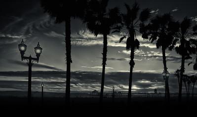 hb sunset with palmsbw
