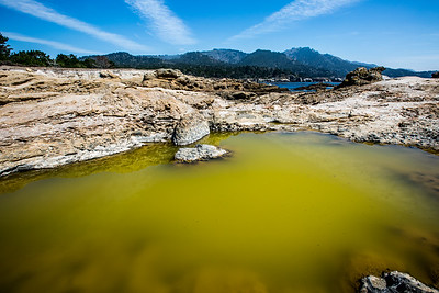 Point Lobos, California I