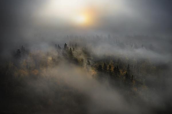 Misty Canada - Canada